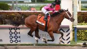 """maximum Security"" Disqualified From Winning Kentucky Derby As Country House Wins"