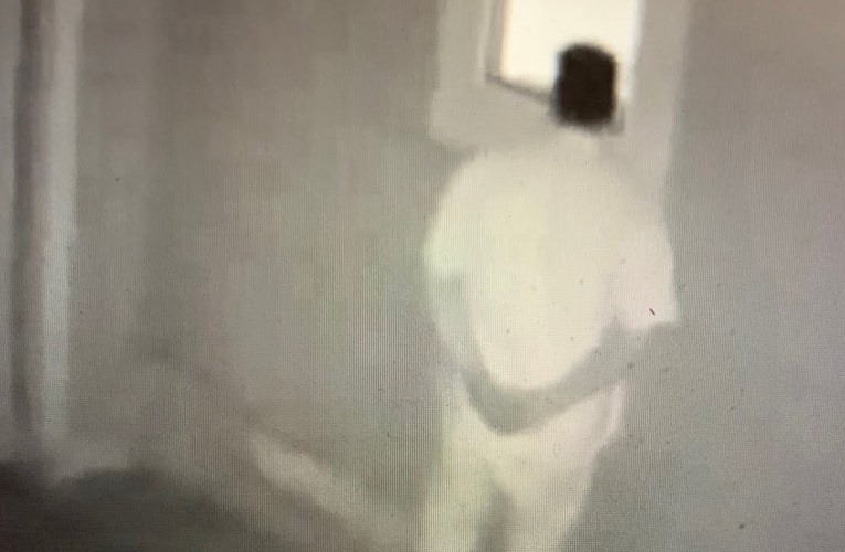 Oakland Adams Point Home Terrorized By Peeping Tom On Security Cam