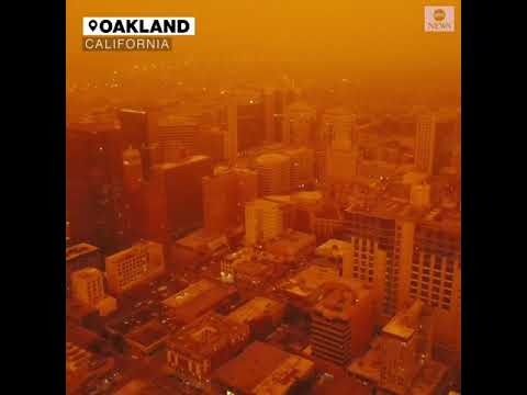Drone Video Shows Oakland Blanketed In A Thick Orange Fog