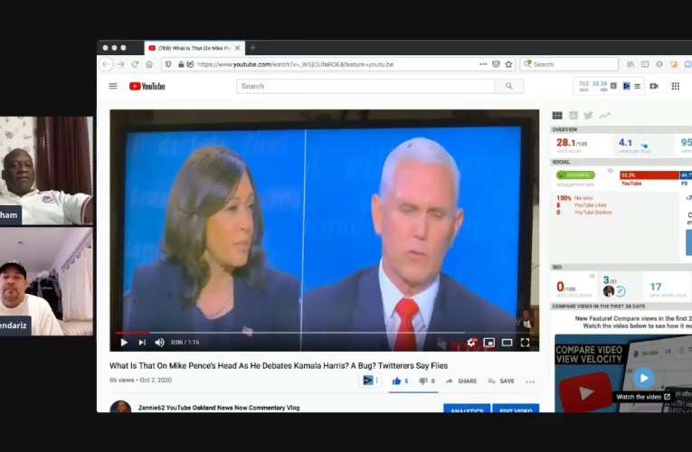 Kamala Harris vs Mike Pence Post Vice Presidential Debate Thoughts On Who Won, And That Fly