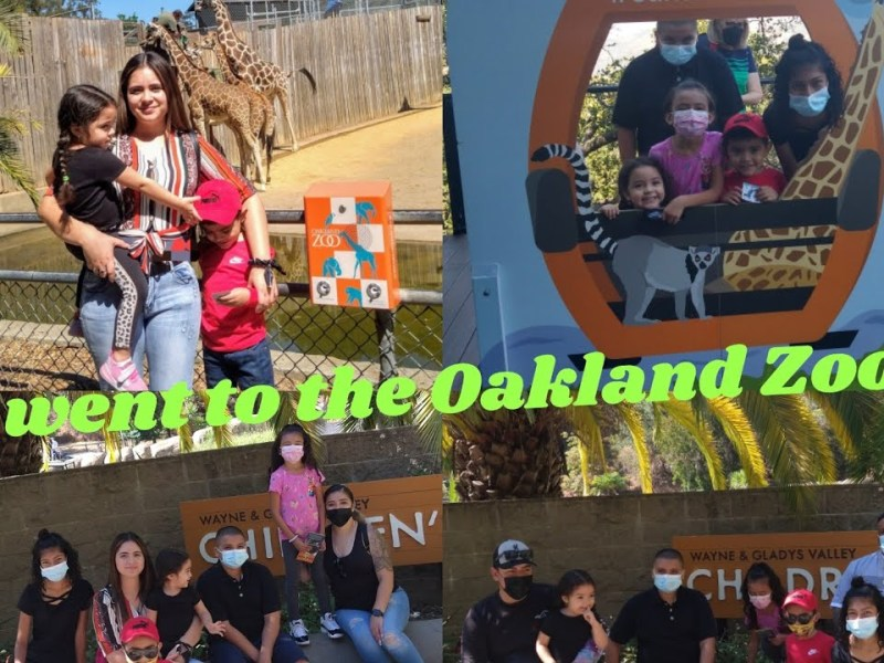 Kaila's First time at The Oakland Zoo 💓