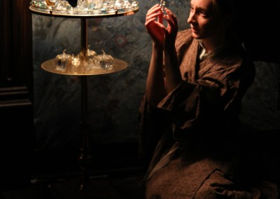 Glass Menagerie   2011