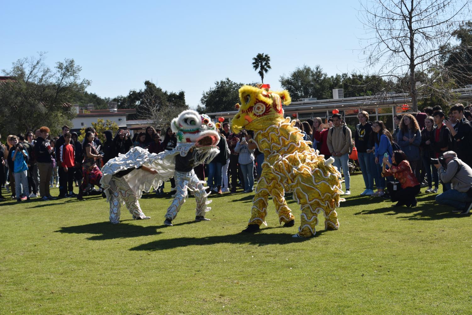 Students perform a traditional Chinese lion dance for OPHS to emerse more about Chinese culture