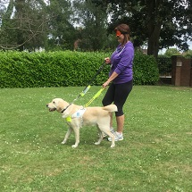 guide-dogs-visit-kingfishers-10