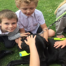 guide-dogs-visit-kingfishers-7