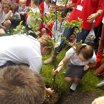 planting-the-tree-2