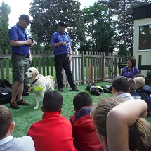 year-2-guide-dogs-4