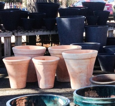 Tall Terra Cotta Pots