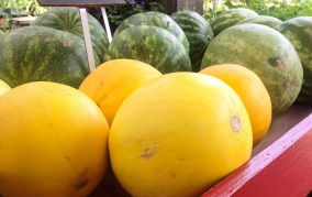 Melons!