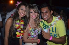 28_Baile do hawai_2013