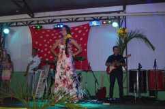 39_Baile do hawai_2013