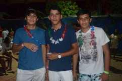83_Baile do hawai_2013