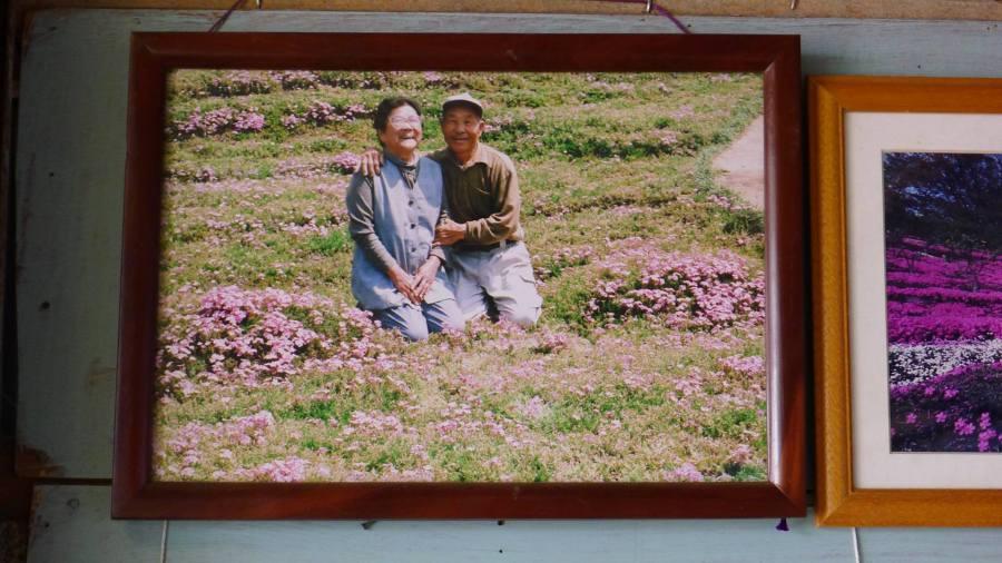 Mii de flori pentru sotia nevazatoare_Japonia (5)