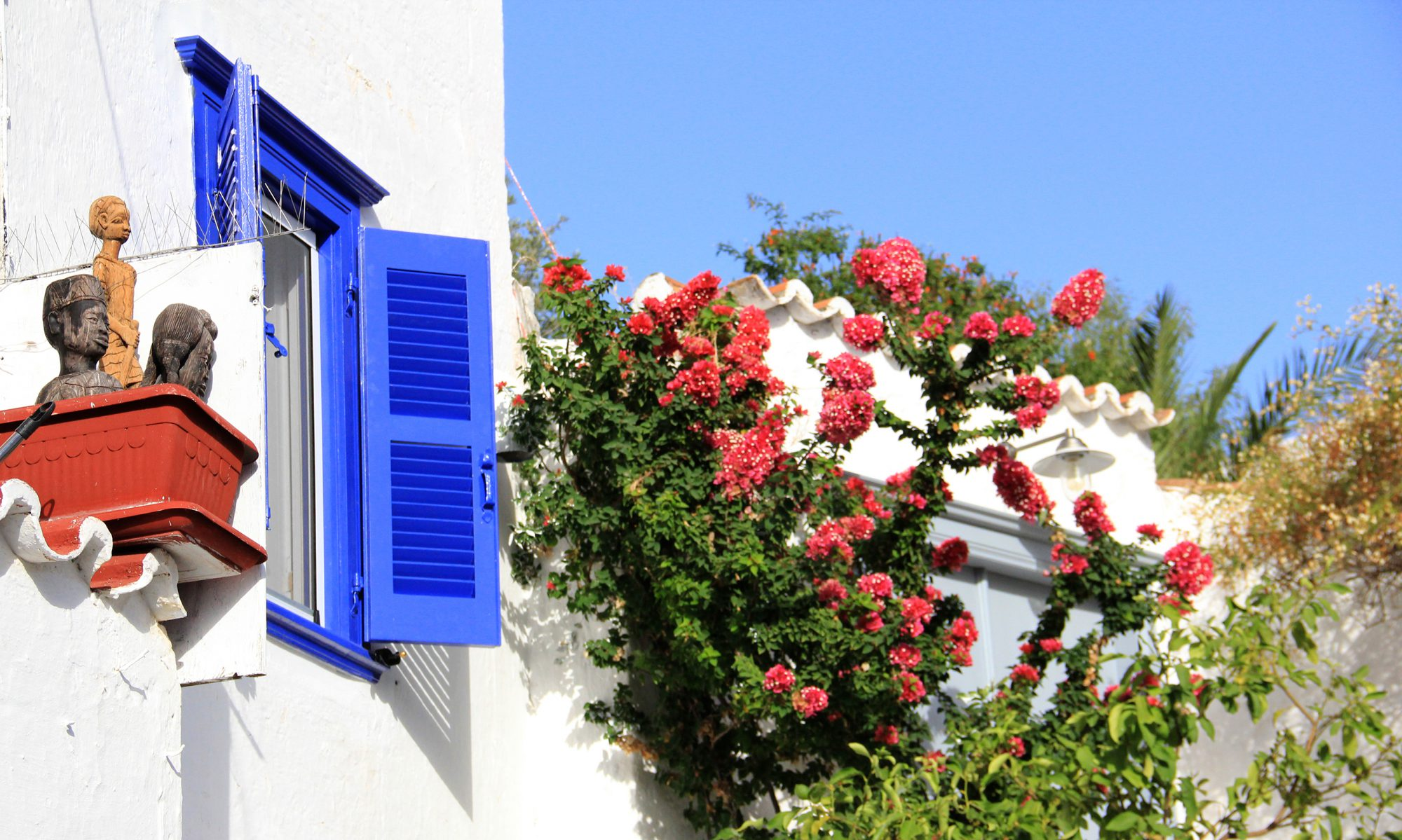 Blue window and red flowers in Hydra Greece - Oana Harrison