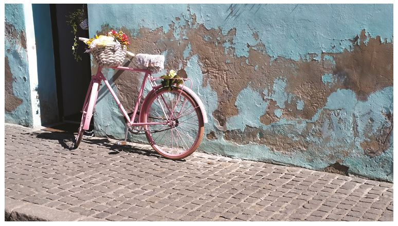 Pink Bicycle Cluj, Romania _ Oana Harrison