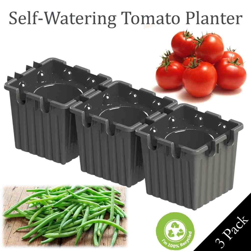 grey self-watering tomato planter
