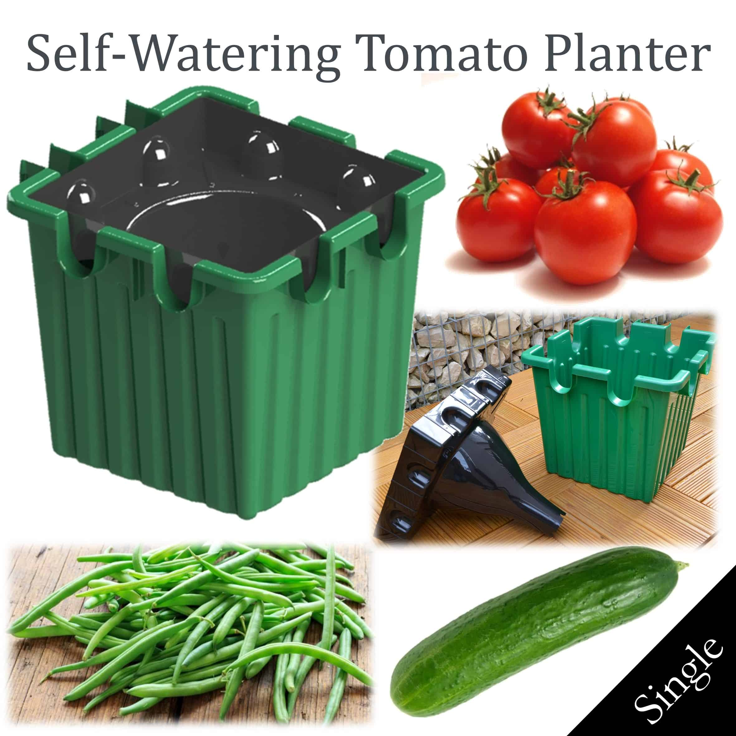 GREEN self-watering tomato planter