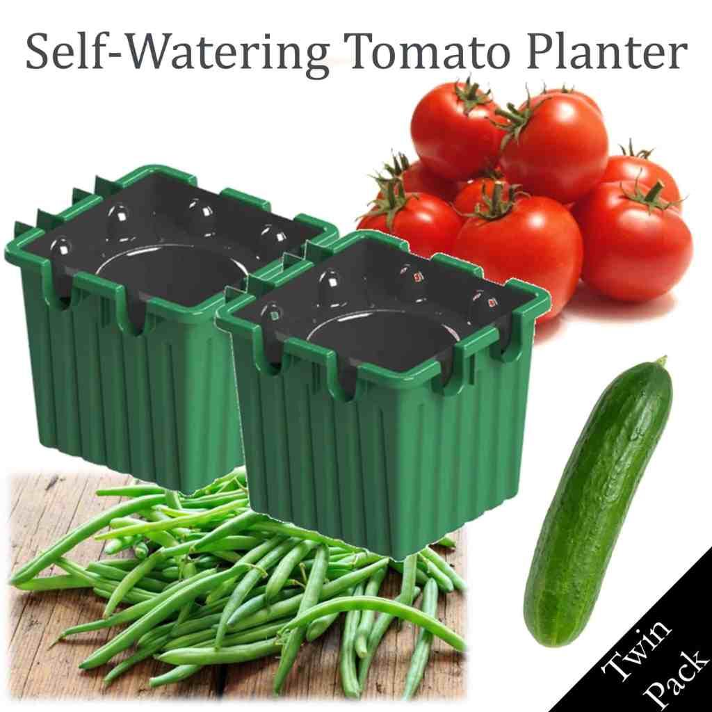 green self-watering tomato planter