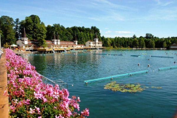 Озеро Хевиз (Венгрия) - лечение, цены, температура, фото