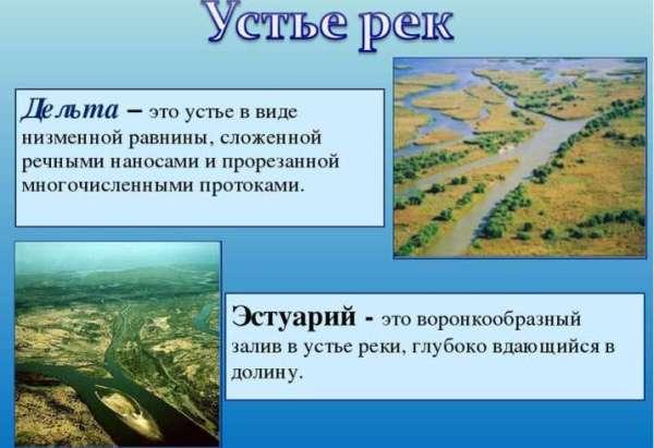 Что такое эстуарий реки в географии - определение кратко