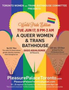 pleasure palace poster