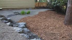 Backyard detail