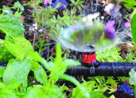 Gotero Regulable Inundador 0-80 l/h 10 ud