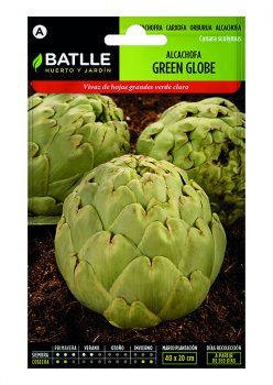Semillas Alcachofa Green Globe Batlle