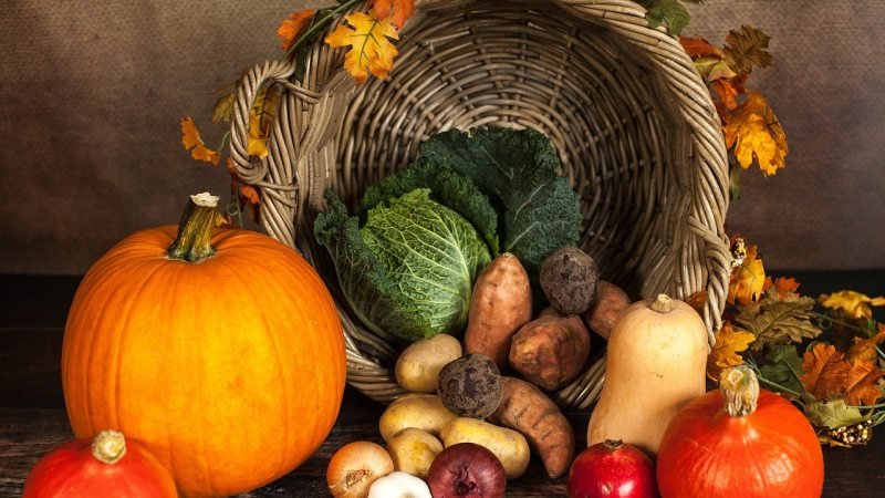 2019: Year of Fruitful Ingatherings