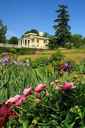 Mansion & Garden by Blackley