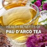 Health Benefits of Pau d'Arco Tea
