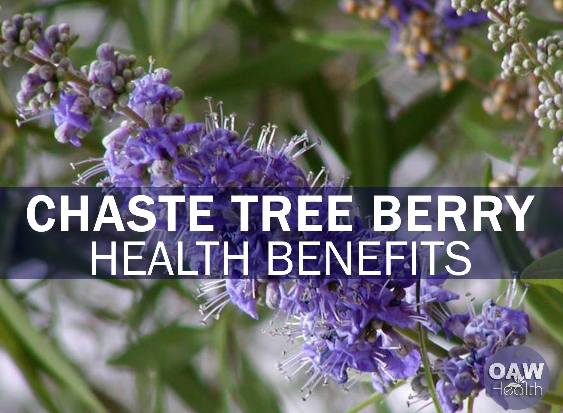 23 Amazing Health Benefits of Chaste Tree Berry