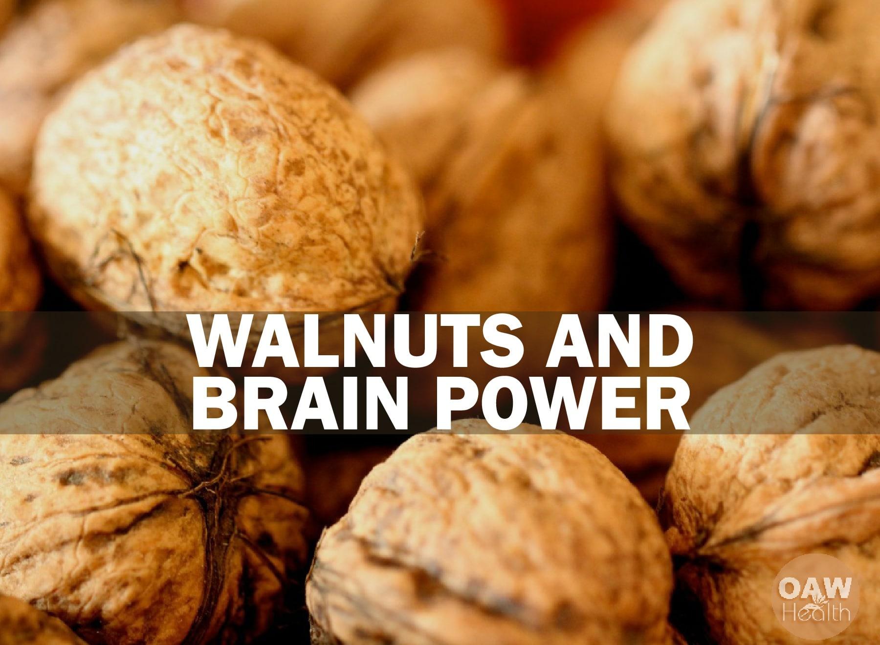 Walnuts and Brain Power Boost