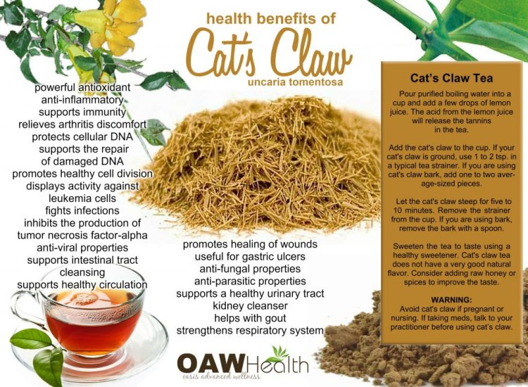 health benefits of cat's claw