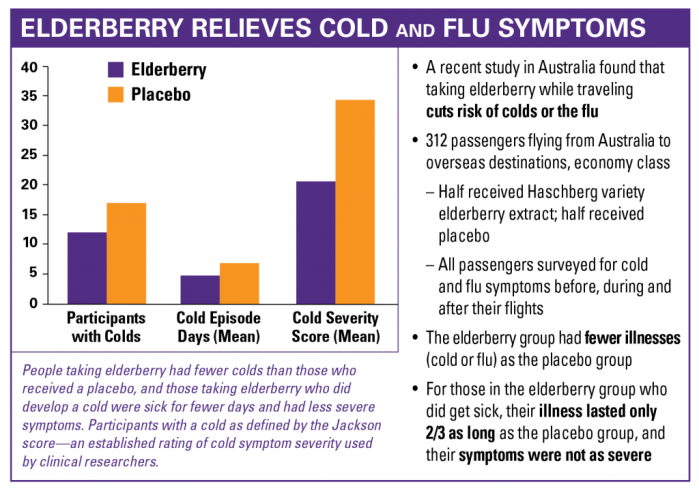 Elderberry relieves cold and flu