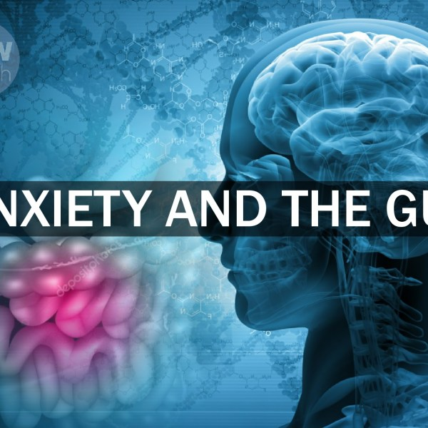 Anxiety and the Gut
