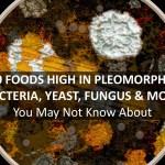 pleomorphic bacteria, yeast, fungus and mold