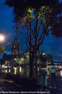 MexCityRain2014-4