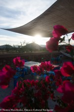 Casita Roof Sunset-2