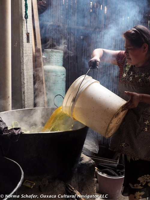 Smokey and steamy dye pot, the alchemy of natural dyes