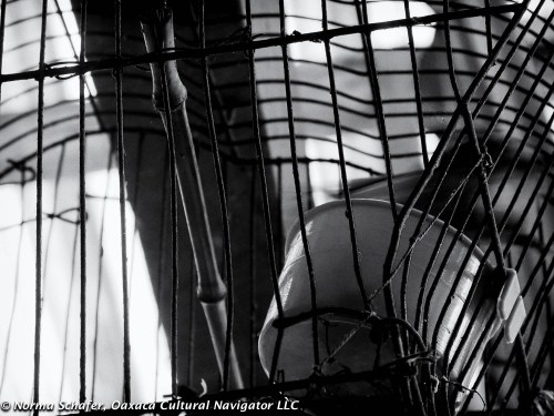 Bird cage. Cuetzalan del Progreso, Puebla. Silver Efex post-processing