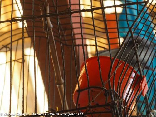 Birdcage in the workshop of candlemaker Eugenio Mendez Nava
