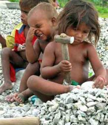 Quase 260 mil crianças estão envolvidas com o trabalho infantil no Brasil