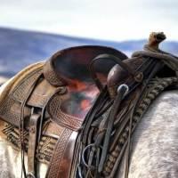 Koń z rzędem
