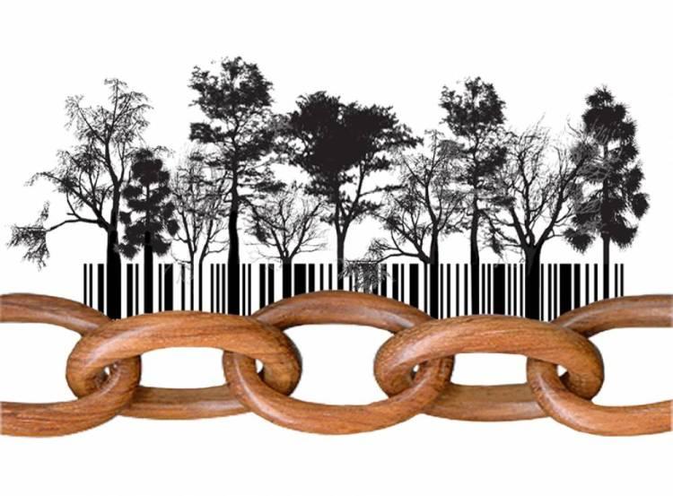 FSC CoC certifikat, FSC CoC (Chain of Custody)