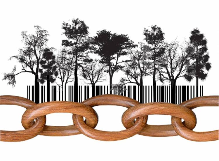 FSC certifikat, FSC CoC (Chain of Custody)