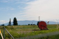Driving up through the Skagit valley