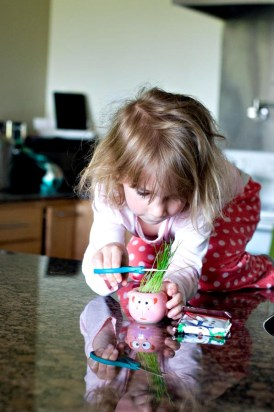 Evelyn grew grass - and gave it a few haircuts :)