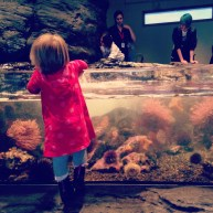 This meant Claire and I got to hang out at the aquarium, too. Bonus.