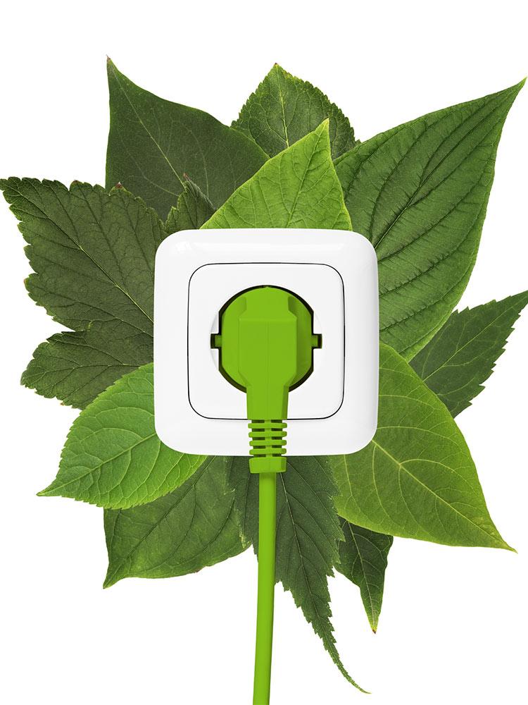 Elektrotechnik grün
